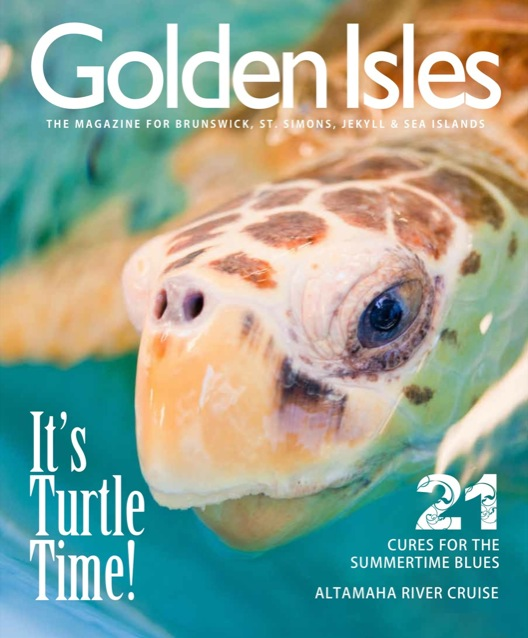 Golden Isles Magazine Sea Turtle Center Jekyll Island Georgia M